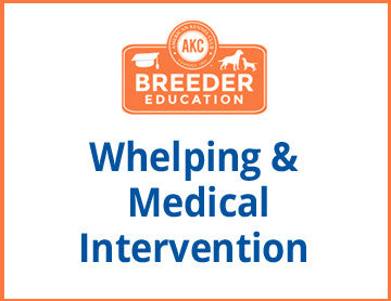 Whelping  Medical Intervention - Free Course
