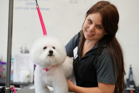 groomer with white dog