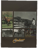 """Doing the Usual, Unusually Well: A History of Claiborne Farm"" by Edward L. Bowen"