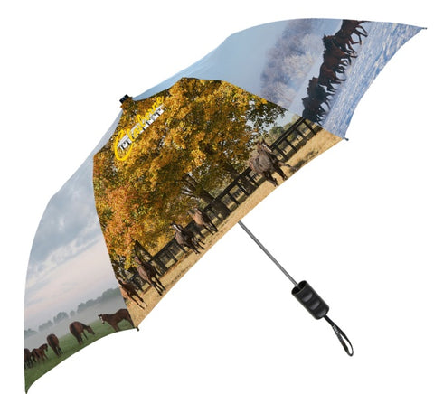 Four Seasons Umbrella