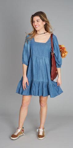 Pink Chicken Leena Dress XS chambray - 19fpcw209b