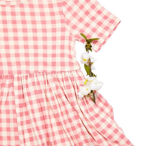Pink Chicken Steph Dress 2y dusty rose gingham - 19spc220a