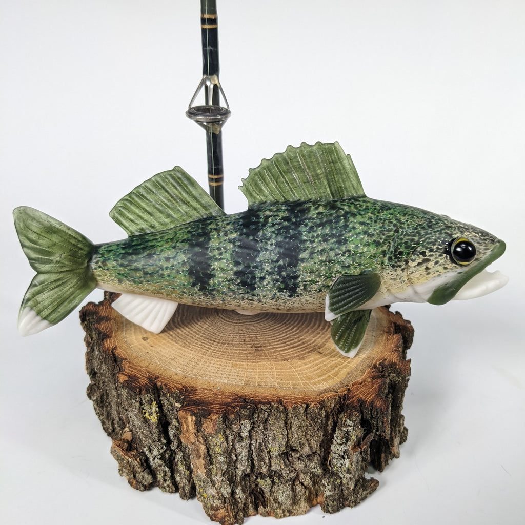 Trapper Studio Full Fish Pipe & Display