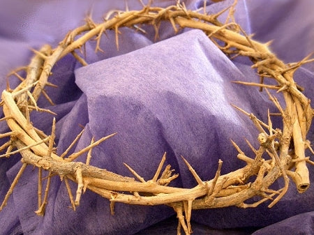 Crown of Thorns - The Paschal Lamb