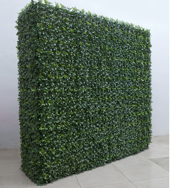 FREE STANDING - BUXUS