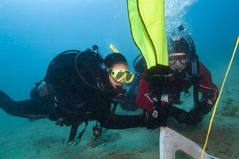 PADI Search and Recovery programs