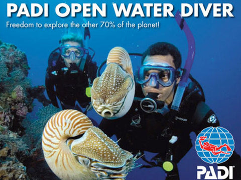 Scuba Divers with Nautilus