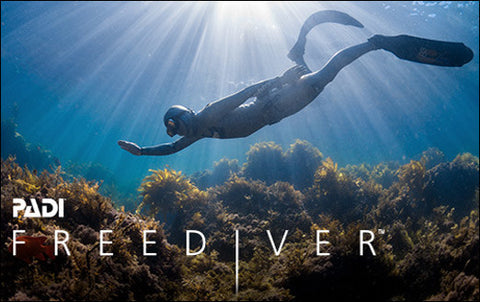 Freediver in Diver's Cove, California