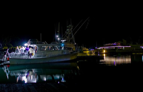 Riviera Yacht Charters Lobster Diving