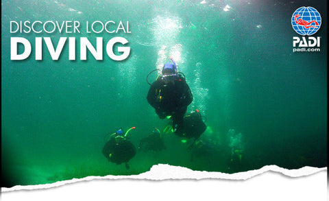Discover Local Dive