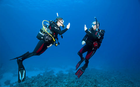 Two Divers Private Open Water
