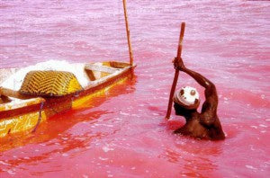 Lake-Retba-or-Lac-Rose-Senegal-5