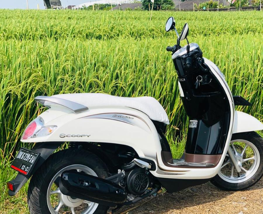 Scooter Seat Cover - White