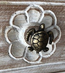 Solid Brass Door Knobs Set Of 4 - Turtle