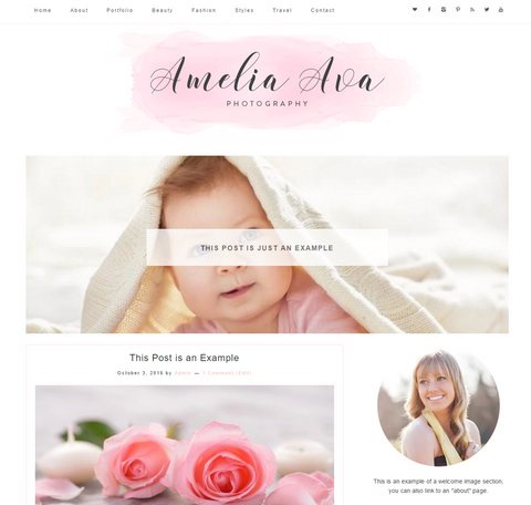 Responsive Wordpress Theme Amelia