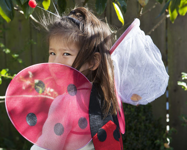 Ladybug Picnic Party Favor