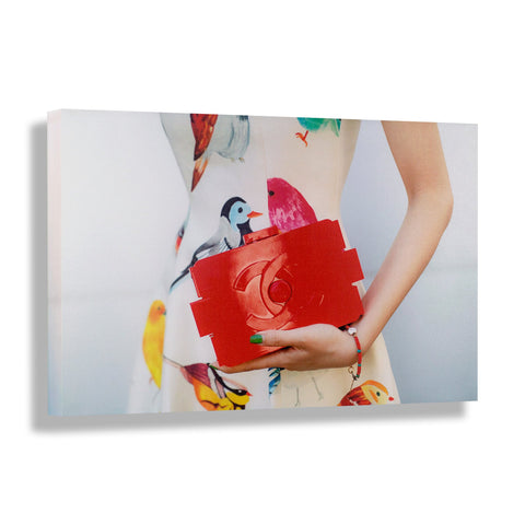 Birds of Fashion | Fashion Art Print