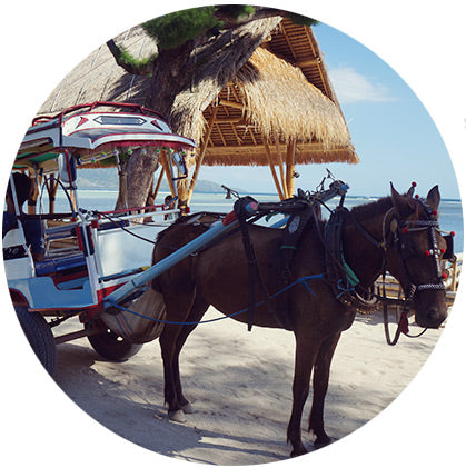 makers travelers gili lombok horse drawn carriage cart no scooters motorbikes
