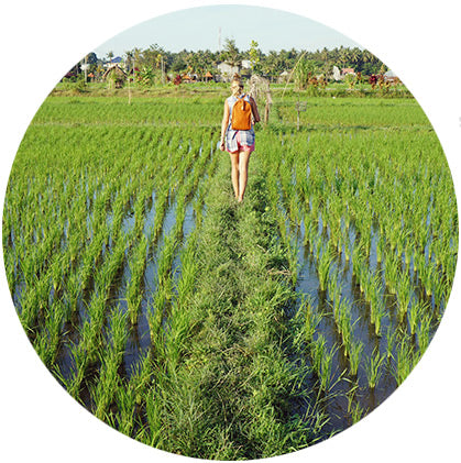 makers travelers north bali bulian rice paddies hiking lovina