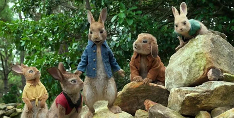 The World of Peter Rabbit Movie