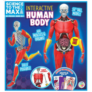 Science To The Max - Interactive Human Body, [Product Type] - Daves Deals