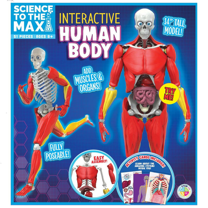 Science To The Max - Interactive Human Body