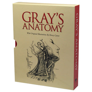 Gray's Anatomy in Slipcase, [Product Type] - Daves Deals