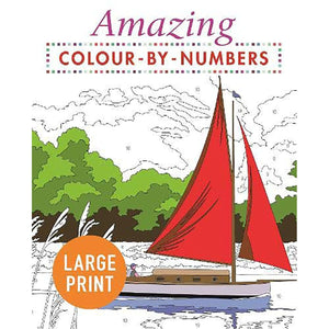 Amazing Colour-by-Numbers Large Print, [Product Type] - Daves Deals