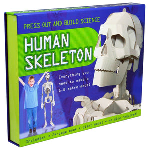 Press Out And Build - Human Skeleton, [Product Type] - Daves Deals