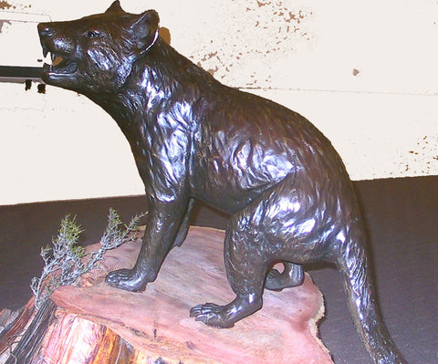 The finished art bronze - Life size bronze sculpture of a Tasmanian Devil / Tassie Devil / tazmanian devil