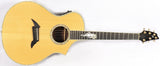 Breedlove USA Custom C22 C22/R Rosewood Acoustic Electric Guitar