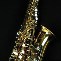 Gemeinhardt GSA500-LQ Student Alto Saxophone Outfit w/Case and K&M Stand