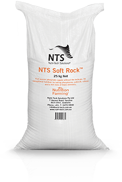 NTS Soft Rock