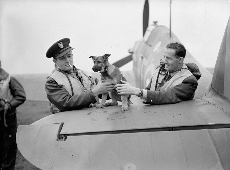 The Polish Pilots Who Flew In The Battle Of Britain!