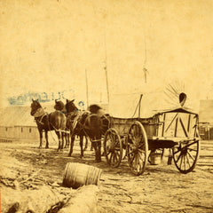 Army wagon going to commissary depot, City Point, for supplies - Civil War photo