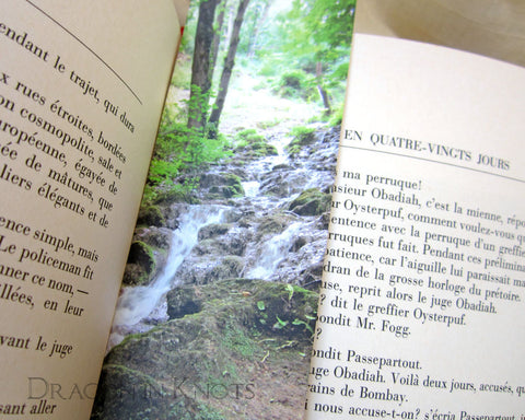 Mountain Spring Bookmark - Dragon in Knots - Photo Bookmarks