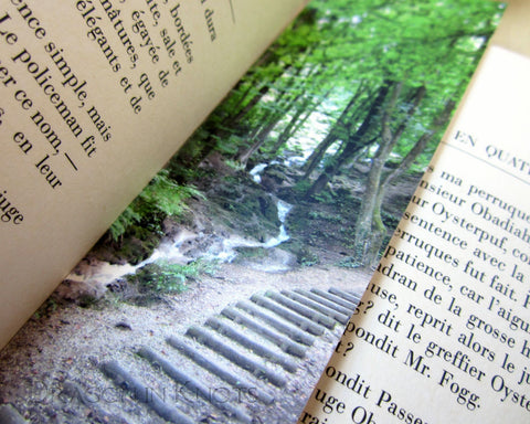 Alpine Stairs Bookmark - Chambéry, Rhône-Alpes, France travel photo