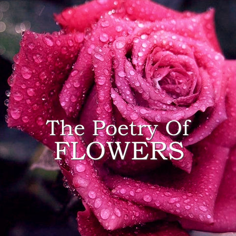 The Poetry of Flowers (Audiobook) - Deadtree Publishing
