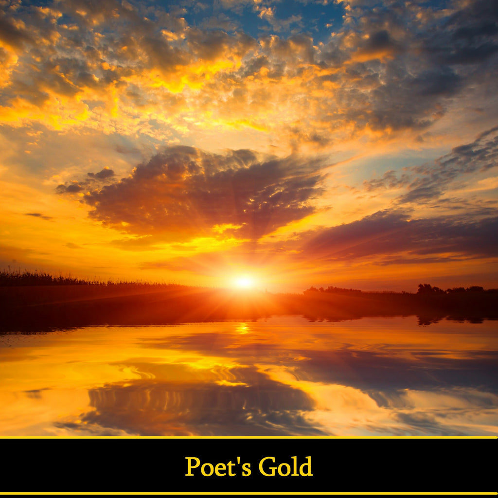 Poet's Gold  (Audiobook) - Deadtree Publishing - Audiobook - Biography