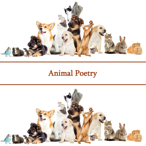 The Poetry Of Animals (Audiobook) - Deadtree Publishing - Audiobook - Biography