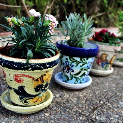 Cactus Canyon Ceramics garden pots with saucers