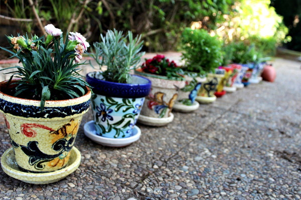 Mexican pottery from Cactus Canyon Ceramics