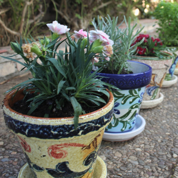 Potted plants in Spanish pottery - flower pots, online gringocool.com