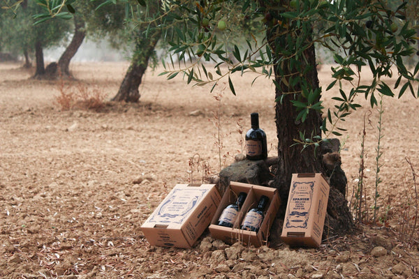 organic extra virgin olive oil product