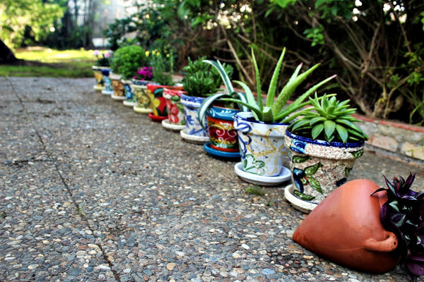Shop gringocool.com for Mexican pottery