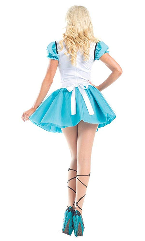 Be Wicked Costume Collection Womens Wonderland Hero