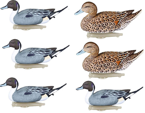 Flambeau Storm Front Classic Floater Pintail Duck Decoys- 6 Pack