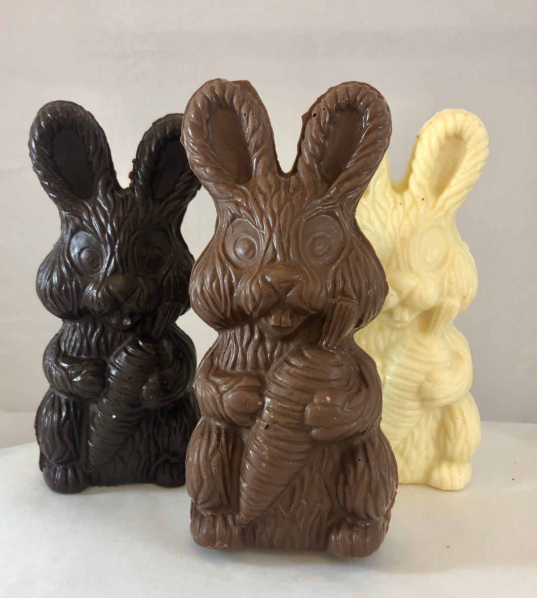 Chocolate Bunny (Hollow)