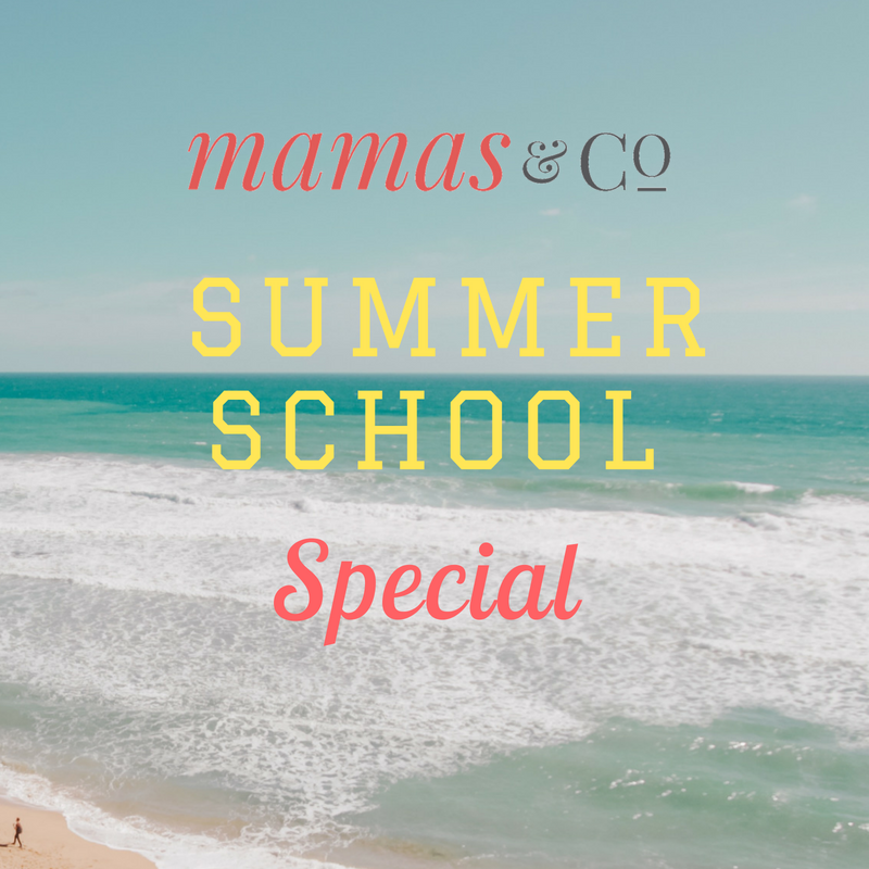 Summer School Webinar Bundle