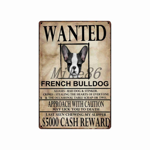 [ Mike86 ] Wanted Pets Funny DOG Border Collie Metal Sign Wall Plaque Poster Doberman Painting art Christmas Decor Art FG-515 - one46.com.au